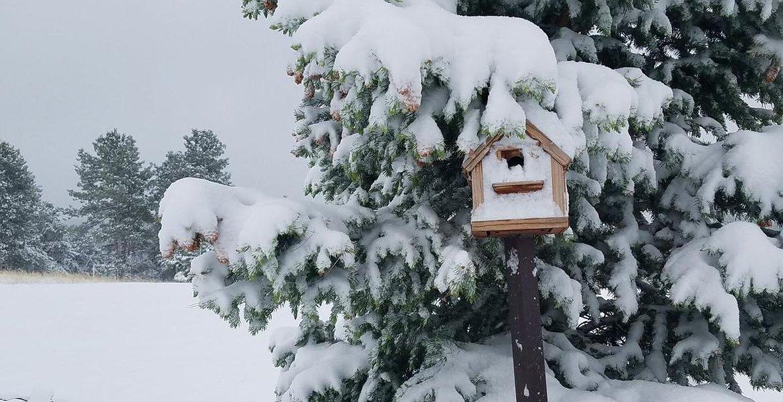 Cambio di marcia, maltempo con neve a bassa quota