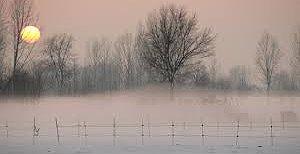 Il ritorno delle nebbie !